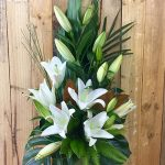 Oriental Lilies Available Now